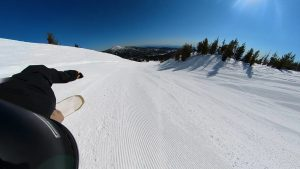 Cardiff Bonsai Snowboard Review