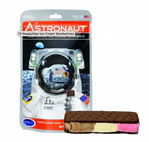 Astronaut Neapolitan Ice Cream Sandwich 2020 Review