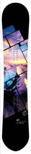 image lotus-11-12_101x550-jpg